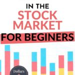 stock market for beginners pin