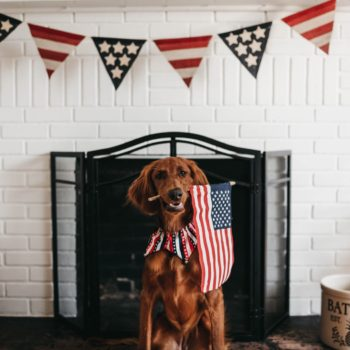celebrate 4th of July on a budget