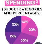 Budget categories and percentages pin